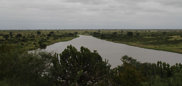9 Africa Backyard